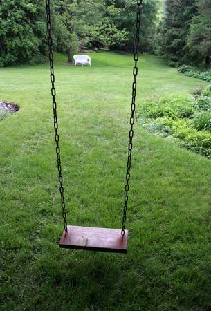 An old wooden swing sitting in a lush backyard.