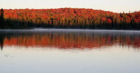 The first light of dawn shining on the beautiful autumn colors of Algonquin Park in Ontario, Canada. photo