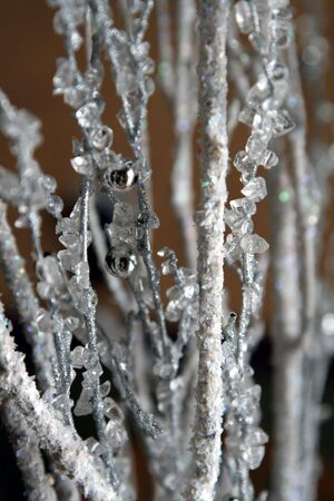A closeup of a wintery branch decoration. Stock Photo