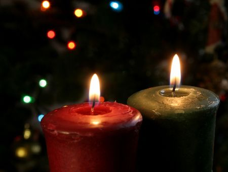 Christmas candles set against a tree. photo