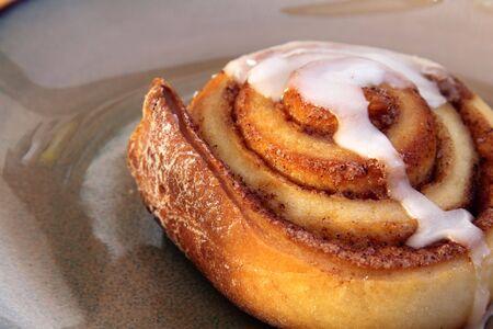 A cinnamon bun sitting on a plate. photo
