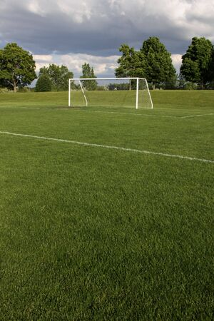 goalline: A view of a net on a vacant soccer pitch.