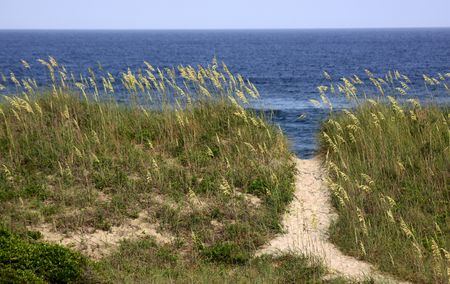 outer banks: A path to the beach on the Outer Banks, North Carolina, USA. Stock Photo