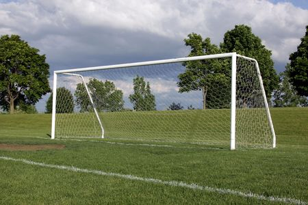 vago: A view of a net on a vacant soccer pitch.