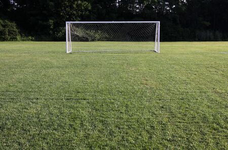 goalline: A soccer net with shot in bright sunlight with trees in the background.