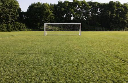 penalty: A soccer net with shot in bright sunlight with trees in the background.
