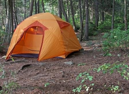 Eine orangefarbene Zelt sitzen in Algonquin Provincial Park in Ontario, Kanada. Standard-Bild - 16011021