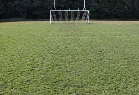goal post: A view of the goal on a vacant soccer pitch.