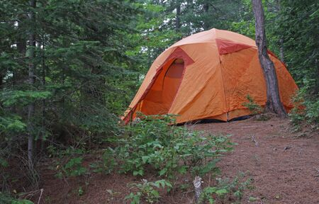 recreate: An orange tent sitting in Algonquin Provincial Park in Ontario, Canada.