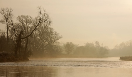 A foggy morning shot of the Grand River in Kitchener, Ontario, Canada.