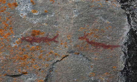 17th: Two creatures depicted in the Agawa Rock Pictographs.  The rock art was created by the Ojibway people in the 17th or 18th centuries.  The site is found in Lake Superior Provincial Park, in Ontario, Canada.