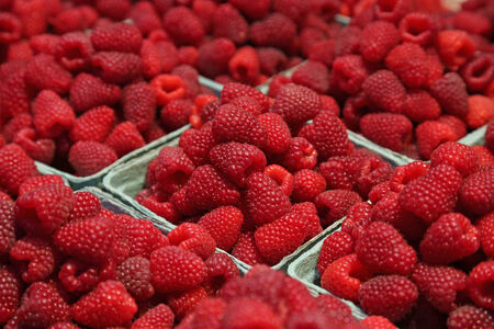 Boxes of fresh raspberries, on sale at a market.