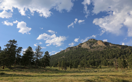 Looking up at Deer Mountain, in Rocky Mountain National Park, Colorado.