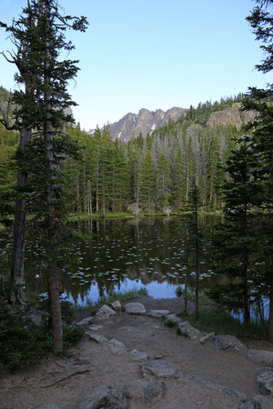 A view of Nymph Lake through the spruce on the trail to Emerald Lake in Rocky Mountain National Park, Colorado.