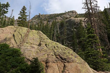 Moss on a huge granite rock, shot near Emerald Lake, shot in Rocky Mountain National Park, Colorado. Stock Photo