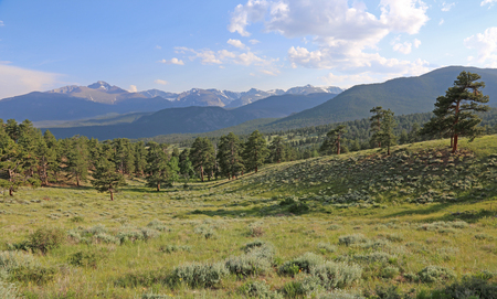 A meadow in the valley just below Deer Ridge Junction, in Rocky Mountain National Park, Colorado, USA.