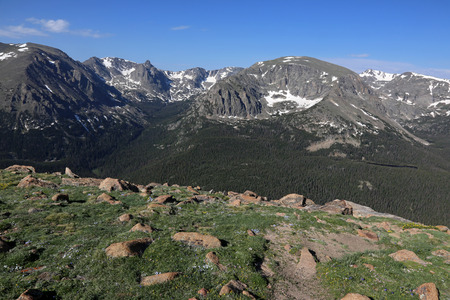 The Forest Canyon is a subapline forest, shot from just off of the Trail Ridge Road in Rocky Mountain National Park, Colorado.  The mountain peaks in the background from left to right are, Stones Peak, Sprague Mountain, Hayden Spire, Terra Thomah Mountain and Mount Ida.