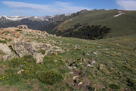 The alpine tundra, shot from just off of the Trail Ridge Road in Rocky Mountain National Park, Colorado.