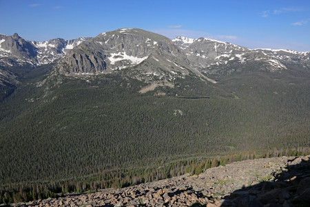 The Forest Canyon is a subapline forest, shot from just off of the Trail Ridge Road in Rocky Mountain National Park, Colorado.