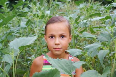 Smiling preteen girl in green grass photo