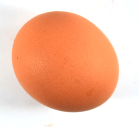 poach: Round brown chicken egg from grocery storce, isolated