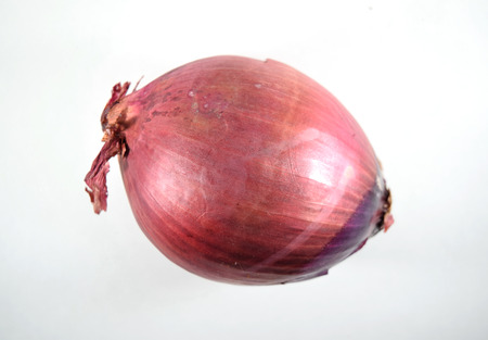 onion isolated: Red onion - isolated