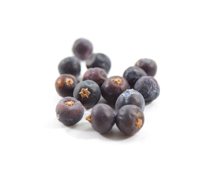 Macro of juniper berries on white background - isolated