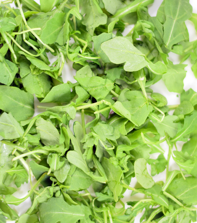 roquette: Layer organic arugula or rocket - isolated Stock Photo
