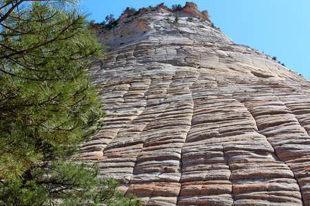 Checkerboard rock in Zion National Park 版權商用圖片
