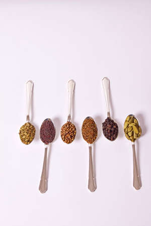 Six different whole spice seeds in silver spoons on a white background Stock Photo - 7786402