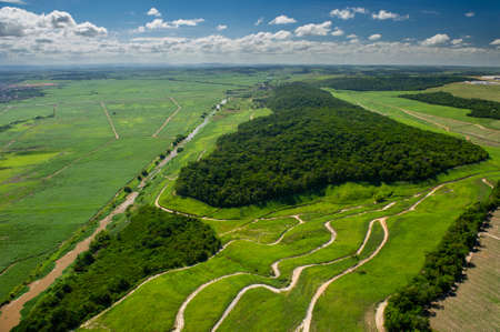 Agriculture, sugar cane cultivation and remnants of Atlantic forest in Goiana 新闻类图片