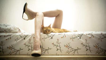 Jambes Femme au lit avec un chat Banque d'images