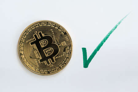 Bitcoin BTC cryptocurrency coin on a white background with a hand drawn green checkmark.
