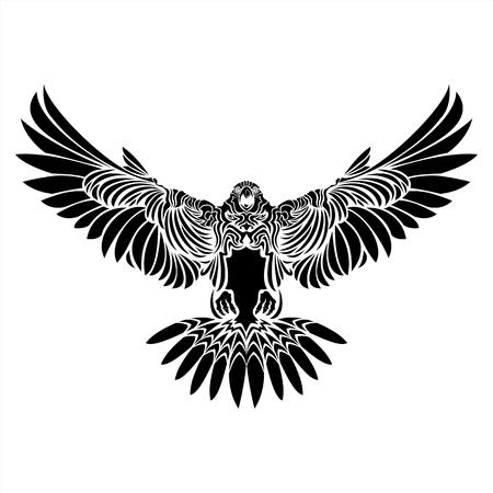 halcón, águila, halcón, negro, blanco, tatuaje, detalles, pájaro, ala