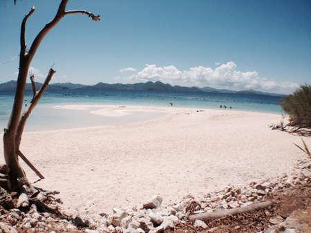 sandbar: Beach view