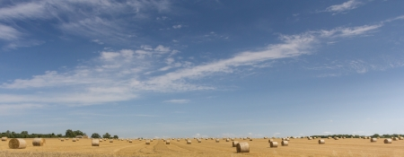 Countryside landscape, straw bales harvest