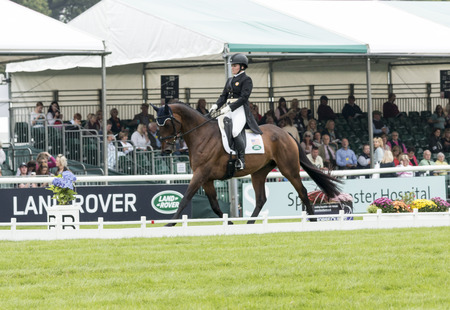 Burghley, Stamford/UK - September 5, 2014: American Hannah Sue Burnett guides 11 year-old Irish Sport Horse Habour Pilot through the Dressage event at the Land Rover-Burghley Horse Trials. Editorial