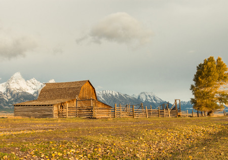 An historic barn and corral glows in the afternoon sun with snowcapped Grand Tetons in the background Standard-Bild