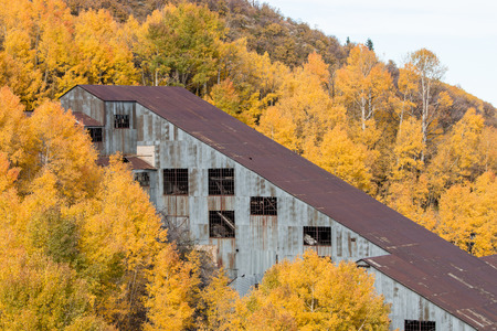 An abandoned mine structure sits in a grove of aspen trees with autumn leaves of yellow and gold