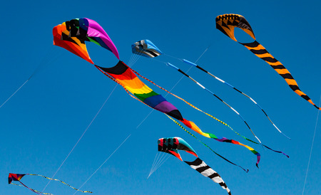 Large colorful kites with long tails and streams fly high against a blue sky Standard-Bild