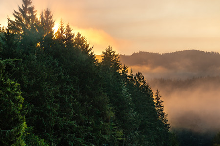 adds: Smoke from forest fires adds to the orange glow as the sunrises over mountains in Washington State