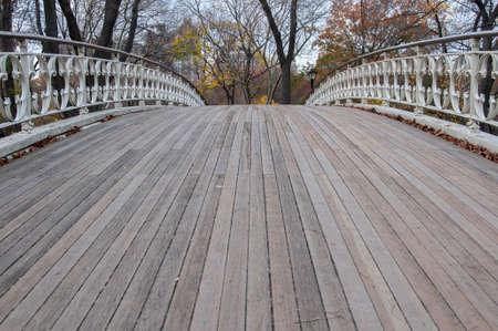 pedestrian bridges: Photo shot from inside Central Park in New York