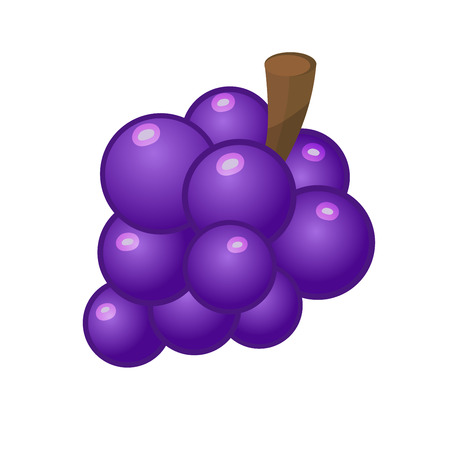 Violet grape in flat cartoon style isolated on white
