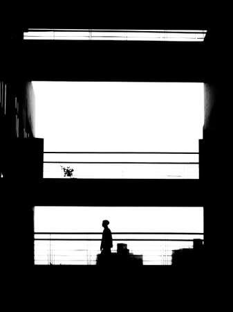 monochrome: monochrome