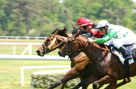 race track: Horse racing Stock Photo