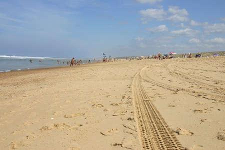 Tracks  in sand Stock Photo - 494377