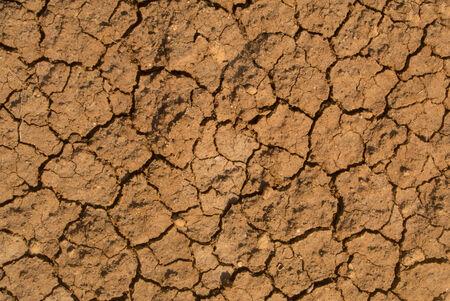 dirtied: Dry mud