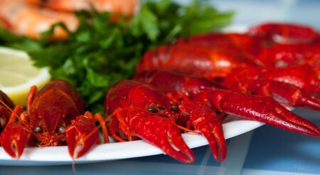 plateful: Red crayfish on a plate Stock Photo