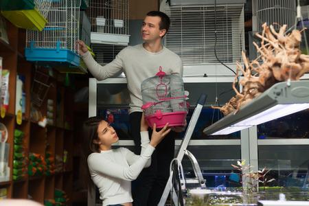 petshop: Young boyfriend helping girl to choose rainforest cage in petshop