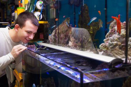 fish tank: Ordinary male customer buying tropical fish in aquarium tank